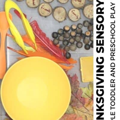 Thanksgiving Sensory Bin for Toddlers and Preschoolers