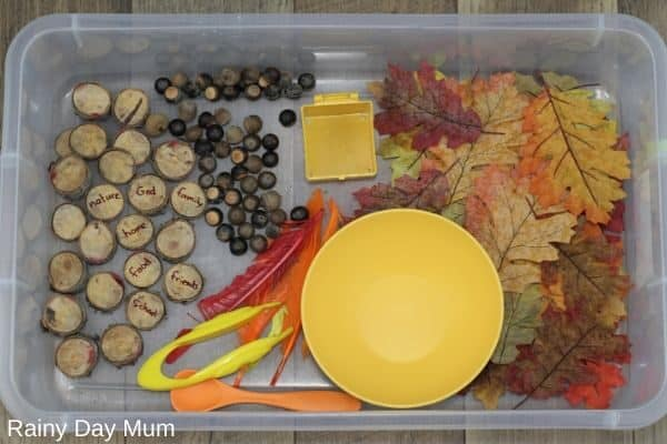 Thanksgiving sensory tub set up ready for play