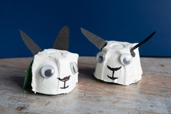 egg carton lamb and sheep