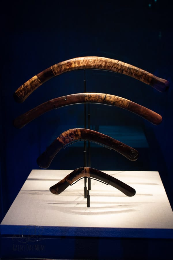 boomerangs on display in the saatchi gallery used for hunting in Ancient Egypt