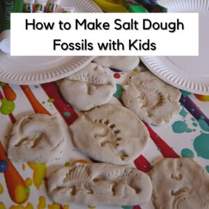 A Step By Step Guide To Making Salt Dough Fossils
