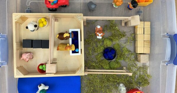 Farm Small World Play set up for toddlers and preschoolers with fischer price animals, moss and wooden blocks all in a plastic tub for easy storage