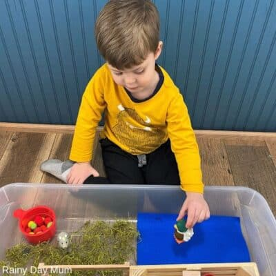 Old MacDonald Had a Farm Sensory Bin for Toddlers and Preschoolers