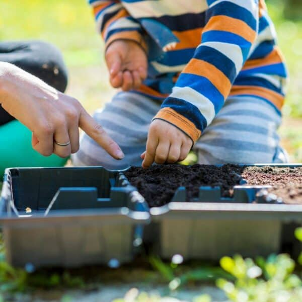 child planting some easy and quick growing seeds in a seed tray with their mother