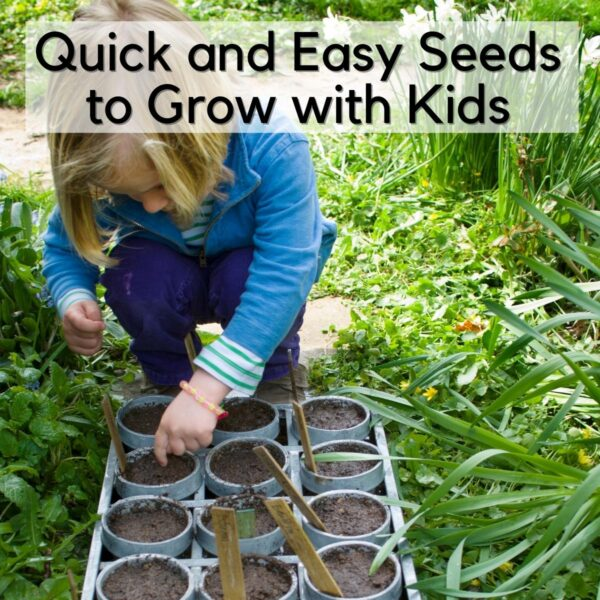 a child planting seeds in a seed tray outside on the ground. The text reads Quick and Easy Seeds to Grow with Kids