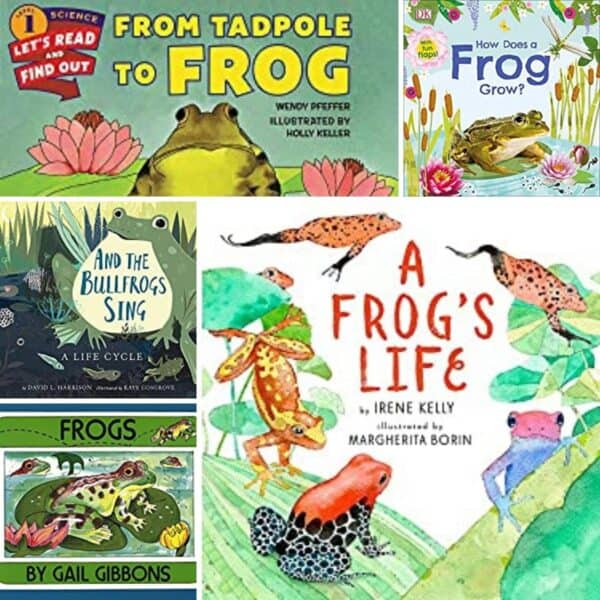 covers of some of the best books to read to kids about the frog life cycle