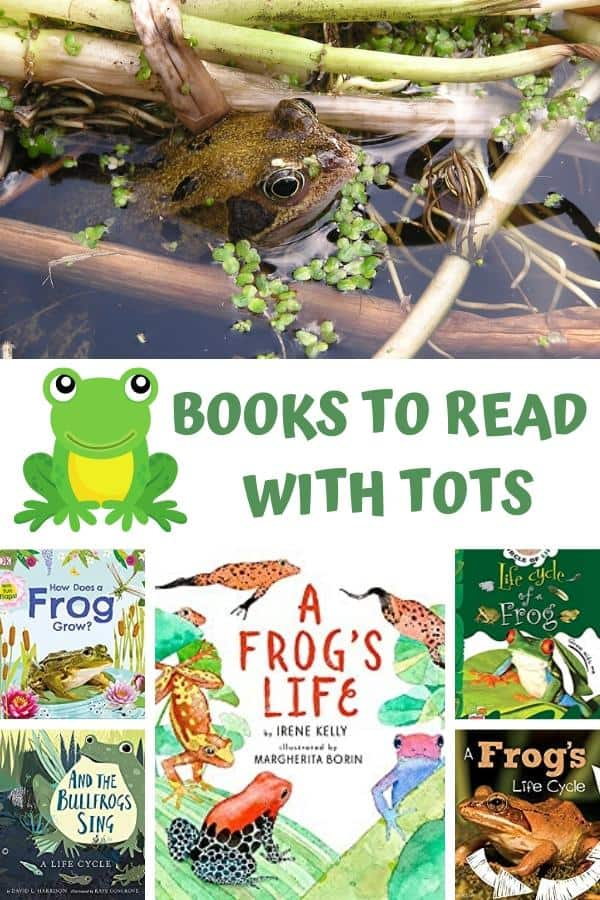 collage of frog books with a picture of a frog in the pond above a carton frog with books to read with tots text and then 5 covers of books all about the life cycle to read with preschoolers and toddlers