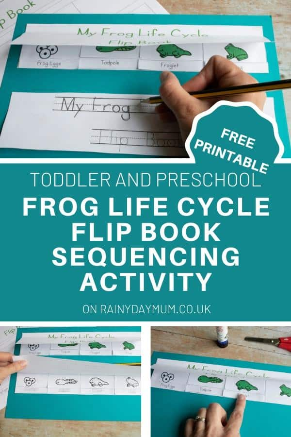 3 images of a frog life cycle flip book with text reading free printable toddler and preschool frog life cycle flip book sequencing activity
