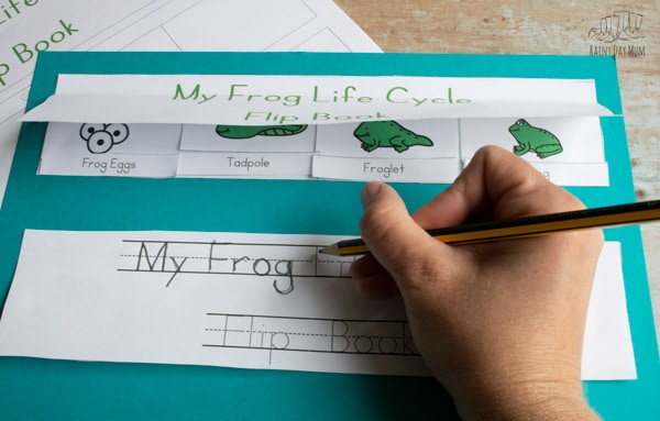 tracing over the letter in a colour and trace version of the frog life cycle activity for preschoolers