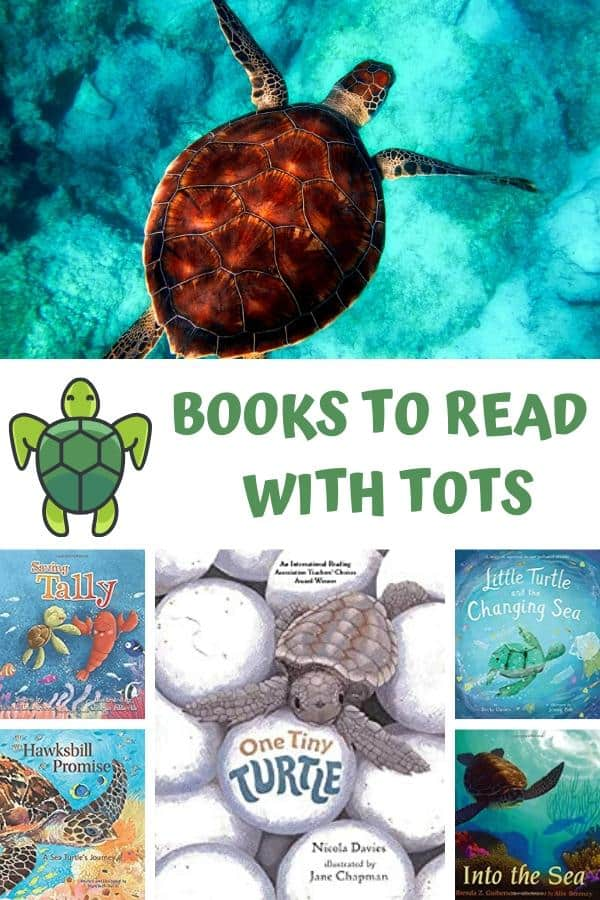 Sea Turtle swimming image with a collage of book covers all about sea turtles with carton sea turtle and text reading books to read with tots