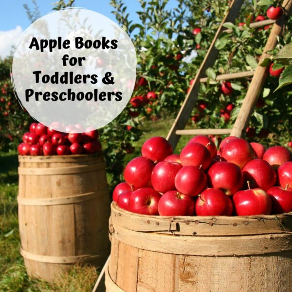 apples in barrel with a ladder in the orchard text overlay reads Apple Books for Toddlers and Preschoolers