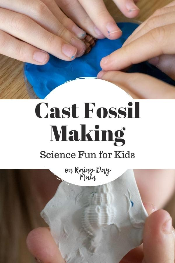 collage of kids making a fossil cast of a shell