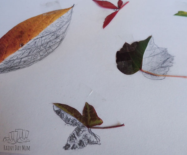 leaf art created by a 10 year old