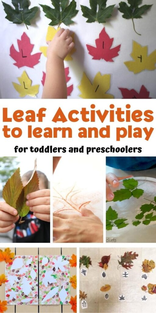 leaf activities to learn and play for toddlers and preschoolers collage of ideas