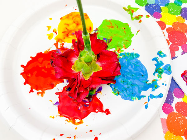 rainbow flower painting child mixed colours on a paint palette with a carnation to create vibrant colours