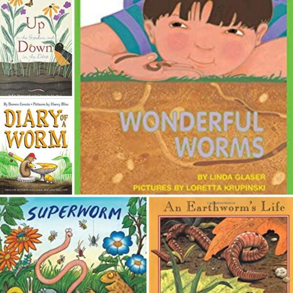 Covers of some of the best worm books for toddlers and preschoolers includes wonderful worms, up in the garden, down in the dirt, diary of a worm, and superworm