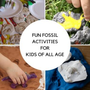 collage of 4 of the fun fossil activities for kids that can be done easily, salt dough fossils, fizzy fossil dinosaur egg excavation, trace fossils in taste safe mud and cast fossil creation