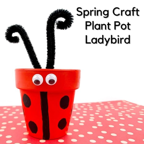 a clay pot painted with red and decorated with pipe cleaners and googley eyes to look like a ladybird on a red spotted paper text reads Spring Craft Plant Pot Ladybird