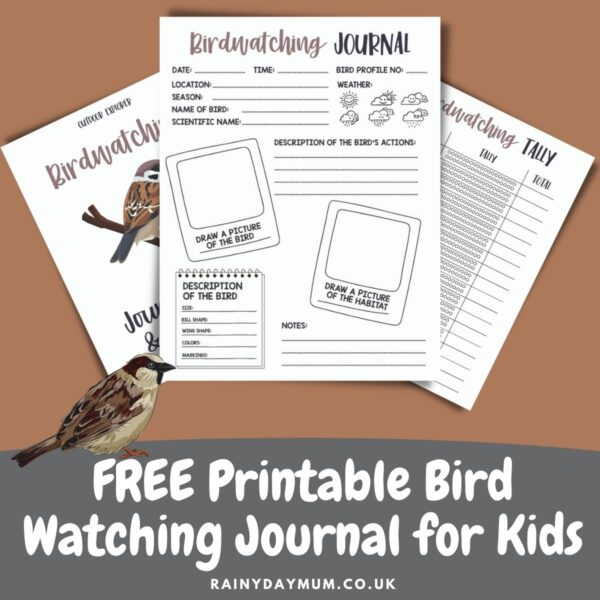 preview of the pages inside the free printable bird watching journal for kids
