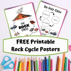 2 rock cycle printable sheets on a desk with kids school equipment, text on a overlay reads FREE Printable Rock Cycle Posters