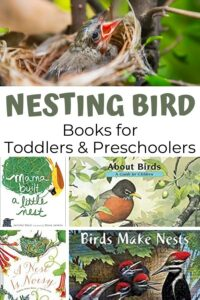 Pinterest image of the best books for toddlers and preschoolers about nesting birds in spring