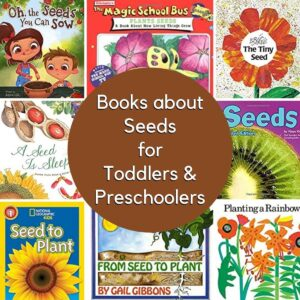 Seed Books for Young Kids