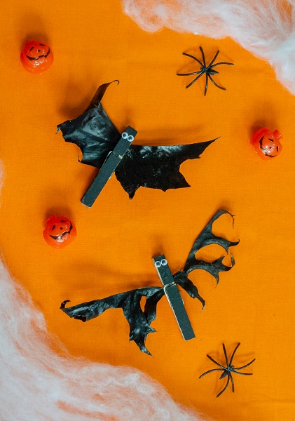 2 spooky bats made from real leaves using clothes pins to attach on a flat lay of orange paper and spider webs