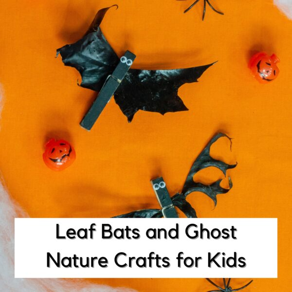 bats made from leaves on a flat lay with text reading leaf bats and ghost nature crafts for kids